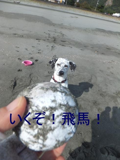 blog_1108_113240.jpg