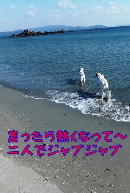 blog_1115_123350.jpg