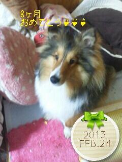 2013-02-24-08-58-40_deco.jpg