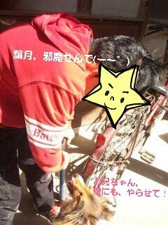 2013-03-22-14-35-51_deco.jpg