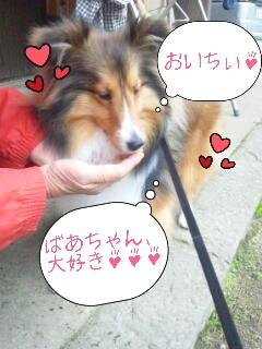 2013-03-29-10-14-01_deco.jpg