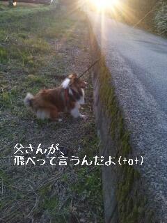 2013-04-12-15-31-48_deco.jpg