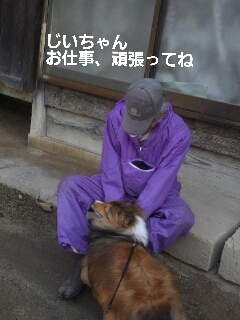 2013-06-01-09-51-34_deco.jpg