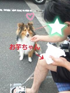2013-06-14-13-46-18_deco.jpg