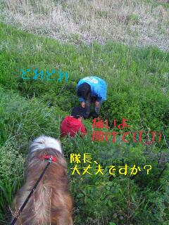 rps20130425_125628_628.jpg