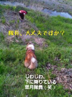 rps20130425_125725_445.jpg