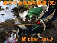 moa1-17-3_20130210151857.jpg