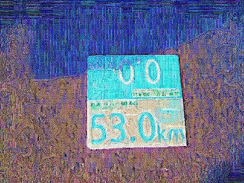 IMG_2079(ししゅう)