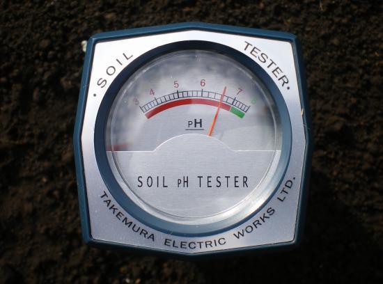 2011-10-30+2011-10-30+001+005_convert_20111030152122.jpg