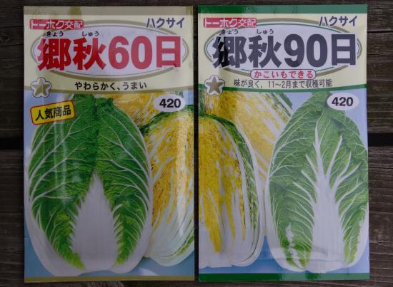 白菜種_convert_20110823180509