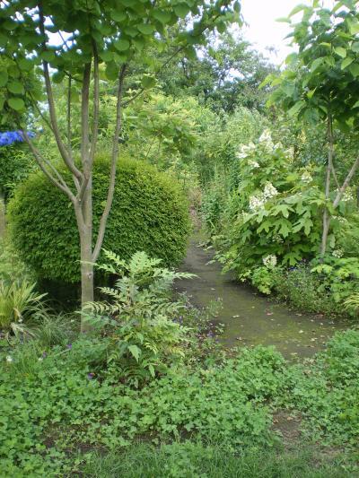 雑木庭造り11,6_convert_20110910151326