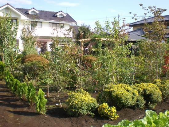 雑木庭造り9,10_convert_20110910150134