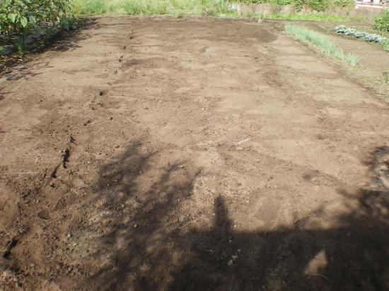 植え付け予定畑_convert_20110915170701