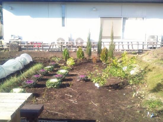庭造り前1_convert_20111018203510