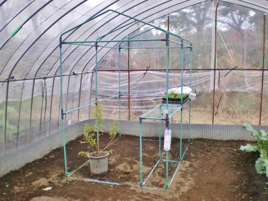 温室フレーム_convert_20111123155259