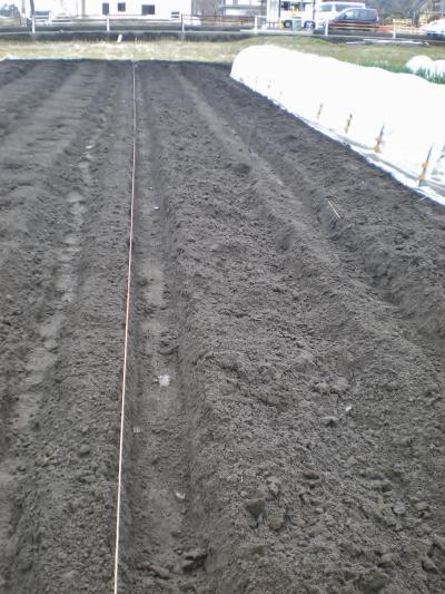 植え溝掘り_convert_20120324164154