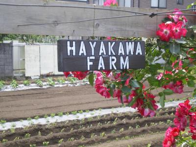 Farm看板