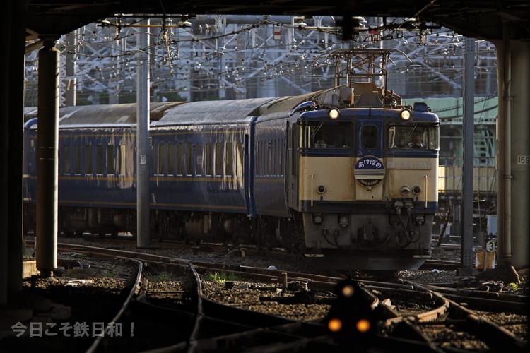 _MG_0534.jpg