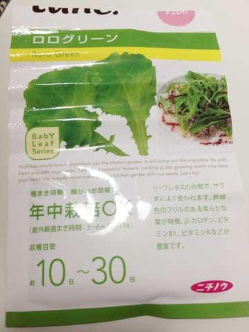 ロログリーン種2
