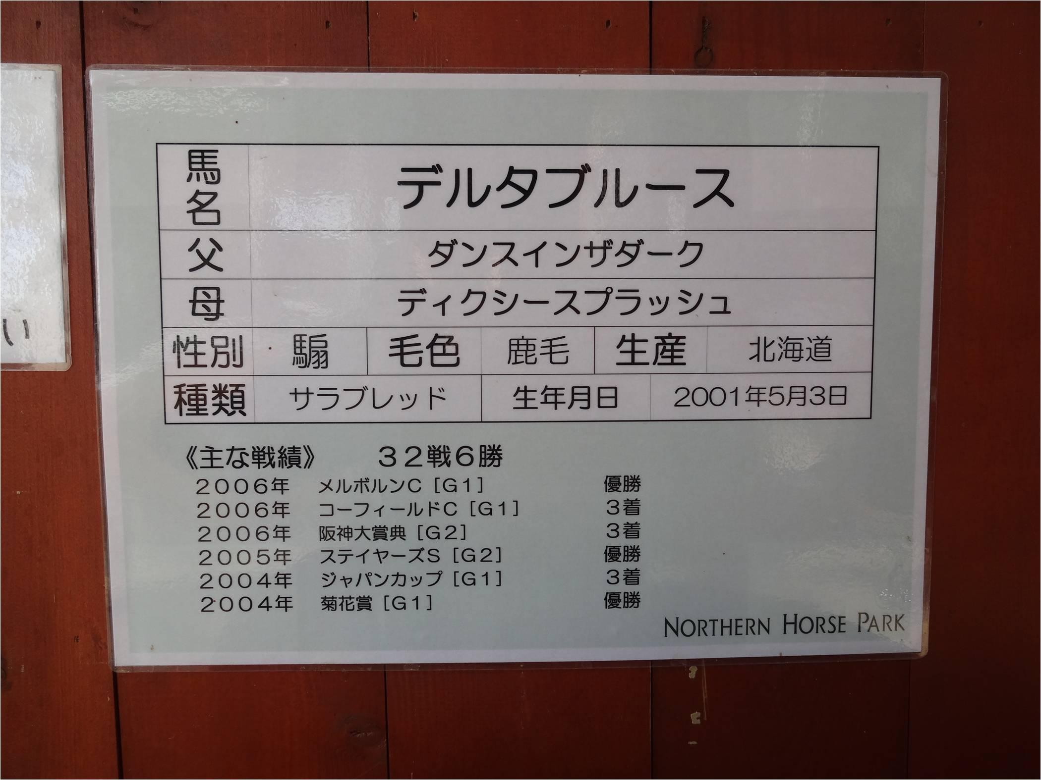 ばんえい1-8