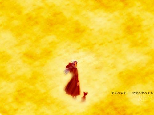 ia-26_20110226120123.jpg