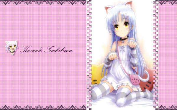 s-ia-56_20110316171000.jpg