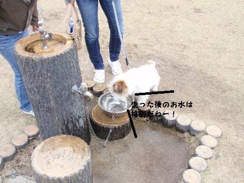宮島SA水飲み