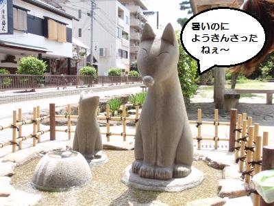 湯田の白キツネ