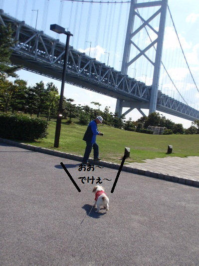 与島から見た瀬戸大橋