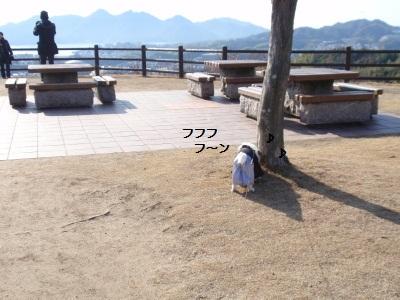 宮島IC2