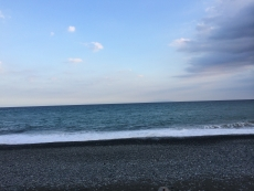 今日は大島がはっきり見える。天候は昨日と大差ないように思えるが。 #海 #海photo