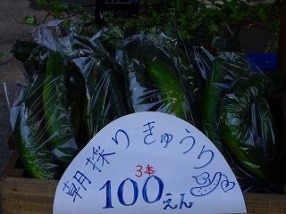 20100526 058