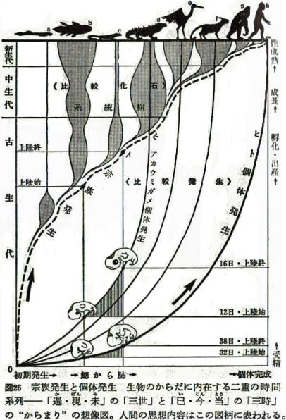 宗族発生と個体発生(三木成夫)