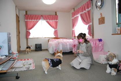 2010.2.16みかん家へ♪0005