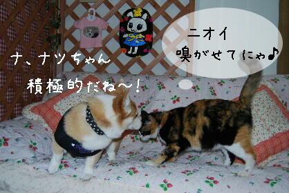 2010.2.16みかん家へ♪0051