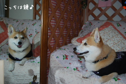 2010.2.16みかん家へ♪0050