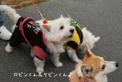 2010.3.7 大平楽OW♪0044