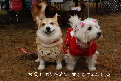 2010.3.7 大平楽OW♪0005