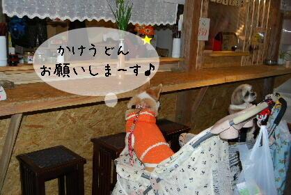 2010.3.7 大平楽OW♪0048