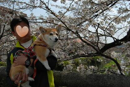 2010.3.27?28 ちゅりちゃんちへ♪0023
