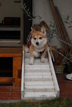 2010.3.27?28 ちゅりちゃんちへ♪0070