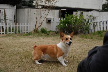 2010.3.27?28 ちゅりちゃんちへ♪0060