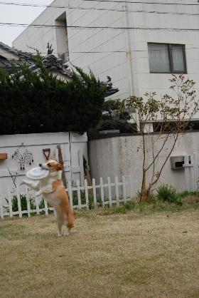 2010.3.27?28 ちゅりちゃんちへ♪0059