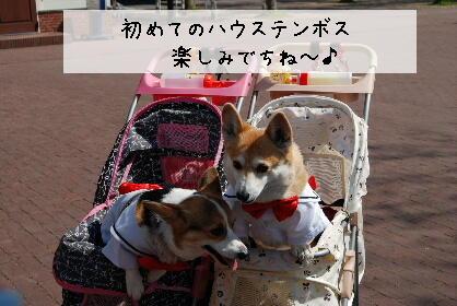2010.4.4ハウステンボス撮影会♪0006