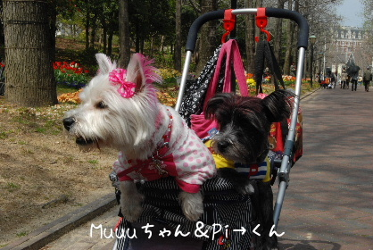 2010.4.4ハウステンボス撮影会♪0083