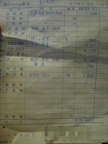 2010年4月後半日記0003