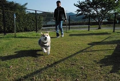 2010.4.29大村ツツジ&ドッグヒル0004