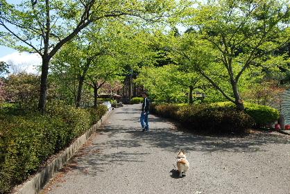 2010.4.29大村ツツジ&ドッグヒル0057