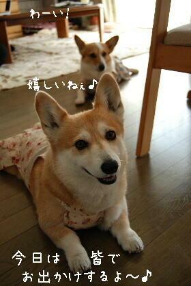 2010.5.1ちゅりちゃんお泊り♪0002
