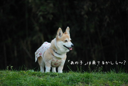 2010.5.1ちゅりちゃんお泊り♪0020